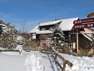 Moléson - INH 26491 - Moleson vacation rentals
