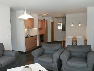 Andromède - INH 26502 - Moleson vacation rentals