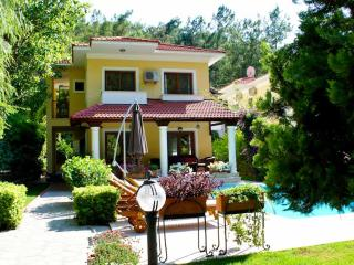 Bright Villa with Internet Access and A/C - Gocek vacation rentals
