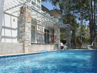 Nice 4 bedroom Gocek Villa with Internet Access - Gocek vacation rentals