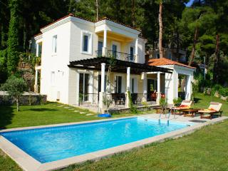 Pine Villa, Private Villa with pool by pine forest - Gocek vacation rentals