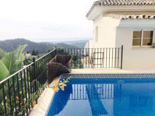 Fantastic villa in Puerto banus - Puerto José Banús vacation rentals