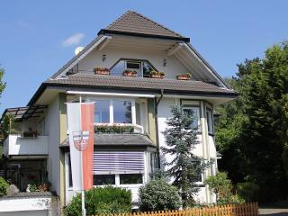 Holiday in the red wine capital Ahrweiler - Bad Neuenahr-Ahrweiler vacation rentals