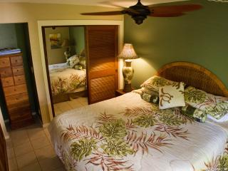 Manualoha Deluxe Condo - Beach Close - End Unit - Koloa vacation rentals