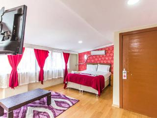 Bright Villa with Internet Access and Parking Space - Istanbul vacation rentals