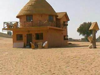 Rajasthan Tour and Travels , Udaipur - Udaipur vacation rentals