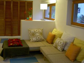 Cozy 3 bedroom Prague Condo with Internet Access - Prague vacation rentals