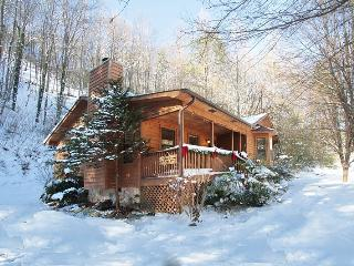 'Bear Ridge Cabin' Secluded setting on 5 Acres!!  Central to All Attractions!! - Townsend vacation rentals