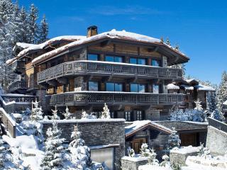 Gorgeous Saint Bon Tarentaise Villa rental with Internet Access - Saint Bon Tarentaise vacation rentals