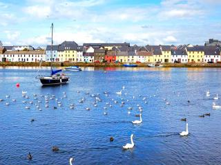 Quiet townhouse in Galway City's Latin Quarter - Galway vacation rentals
