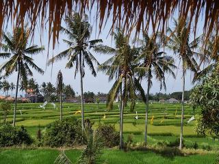 Villa Aist. Brand new!2016! Only 1000$ per 2 weeks - Denpasar vacation rentals