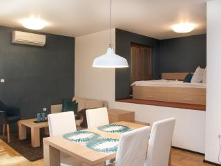 Modern Studio in Central Sofia - Sofia vacation rentals