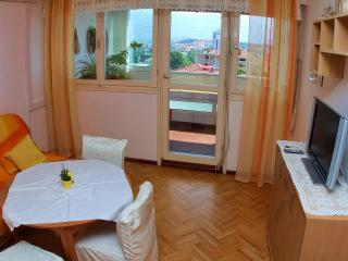 1 bedroom Condo with Internet Access in Split - Split vacation rentals
