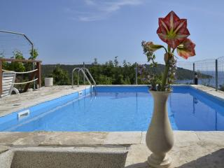 2 bedroom Condo with Television in Maslinica - Maslinica vacation rentals