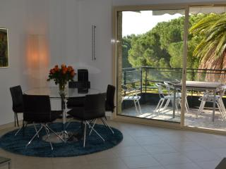 Croisette - with terrace and 1 minute to the beach - Cannes vacation rentals