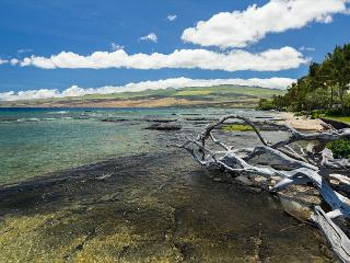 "Hale La'i - 4 BD/3BA voted ""Best house in Puako"" - Kamuela vacation rentals"