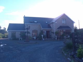 Live With A Family +Go to High School in Ireland - Caherconlish vacation rentals