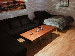 Spacious & warm room 6min from central Gothenburg - Gothenburg vacation rentals