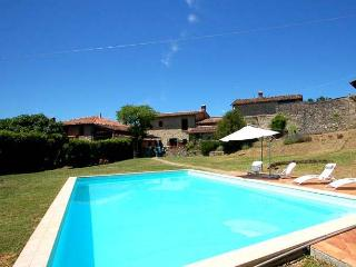 Villa with private pool 60 kms from Lucca and sea - Villa Collemandina vacation rentals