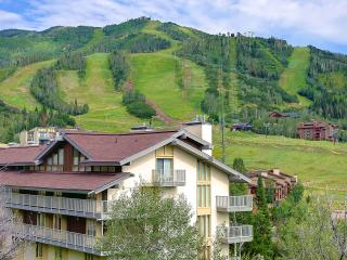 On the Mountain Updated Granite Stainless - Steamboat Springs vacation rentals