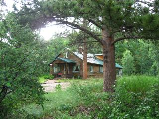 Cascading Creek Log Cabin - Allenspark vacation rentals