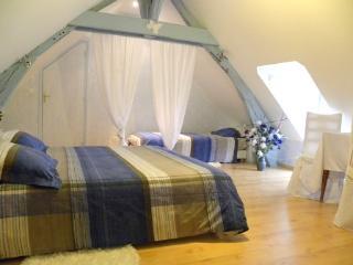 Chambre d'hôtes La Quèrière - Les Bleuets - - Mur-de-Sologne vacation rentals