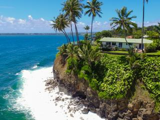 Oceanfront Promontory - an Unforgettable View! - Hilo vacation rentals