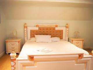 Coalbrookdale and Ironbridge house - Coalbrookdale vacation rentals