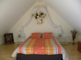 Chambre d'hôtes La Quèrière - Les Orchidées - - Mur-de-Sologne vacation rentals