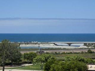 Ocean View Luxury Condo at Del Mar - Del Mar vacation rentals