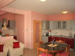 2 bedroom Condo with Internet Access in Bibinje - Bibinje vacation rentals