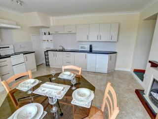 Nice Cottage with Internet Access and Washing Machine - Rhydlewis vacation rentals