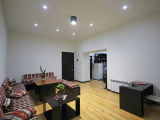 Republic Square Brand New Apartments - Yerevan vacation rentals