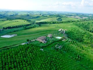 Romantica camera con vista sulle colline senesi - Buonconvento vacation rentals