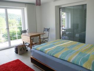 Vacation Apartment in Baden (Switzerland) - modern, central, comfortable (# 9478) - Baden vacation rentals
