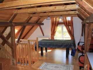 Chaloupka u Lesa (Svihov, Pilsen) - Svihov vacation rentals