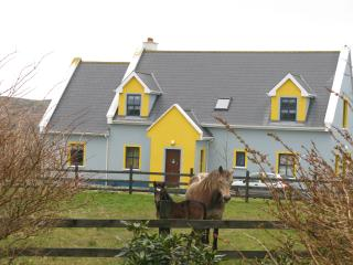 Adorable House in Clifden with Television, sleeps 16 - Clifden vacation rentals