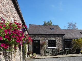 Comfortable 2 bedroom Cottage in Llandovery - Llandovery vacation rentals