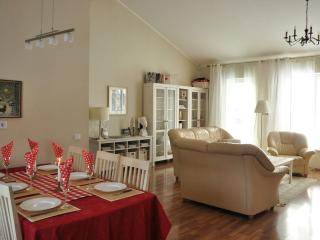 Lovely House with Dishwasher and Long Term Rentals Allowed (over 1 Month) - Tallinn vacation rentals