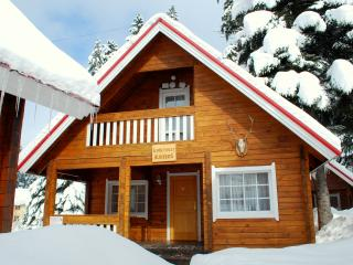 Beautiful 3 bedroom Chalet in Borovets with Internet Access - Borovets vacation rentals
