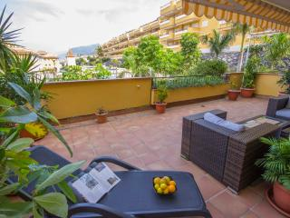 LUXURY & MODERN APARTMENT - BIG TERRACE & GARDEN - Los Gigantes vacation rentals