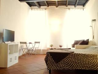 Navona's Best Choice A\C & Wi-Fi - Rome vacation rentals