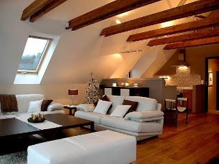 Luxury farmhouse in South Bohemia. - Lhenice vacation rentals