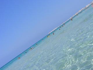 villa a 3km dalla costa adriatica e 10km da Leuca - Tiggiano vacation rentals