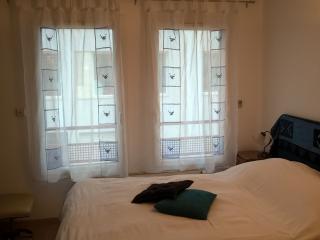 Cozy Lyon Studio rental with Internet Access - Lyon vacation rentals