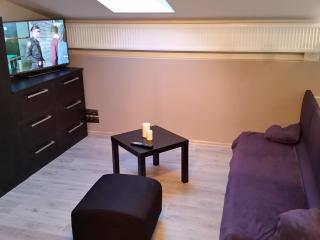 Nice Condo with House Swap Allowed and Central Heating - Krakow vacation rentals