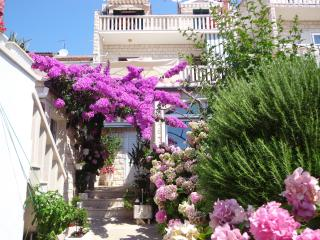 Garden Terrace Apartment near  Zlatni Rat Beach - Bol vacation rentals