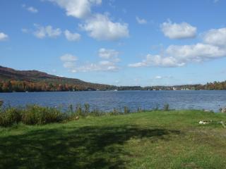 New Custom-designed Lakefront Cottage - Lake Elmore vacation rentals