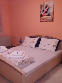 1 bedroom Apartment with Internet Access in Nis - Nis vacation rentals