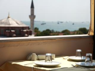 Whole Rental Building w/ terrace and breakfast - Istanbul vacation rentals